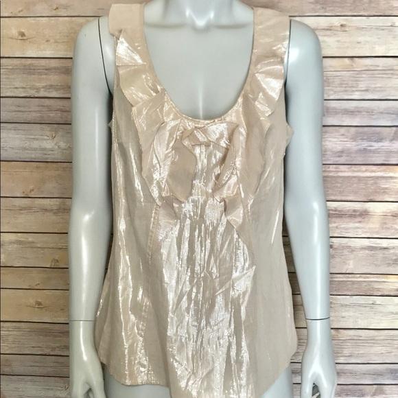 faaae399b2344  express  shimmery blush colored blouse